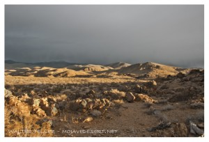 Gold in the hills of the Mojave Desert