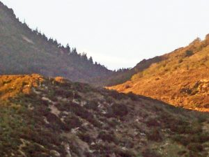 Devil's Canyon, San Bernardino National Forest, Old Spanish Trail