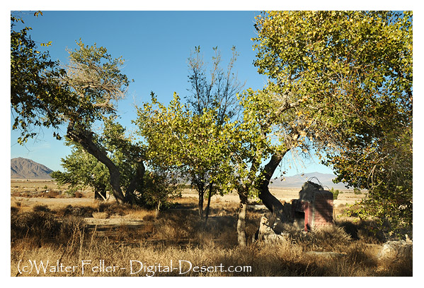 Box S Ranch, Lucerne Valley, CA.