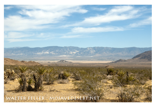 View of Lucerne Valley from North Valley
