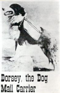 The true story of Dorsey the Dog Mail Carrier