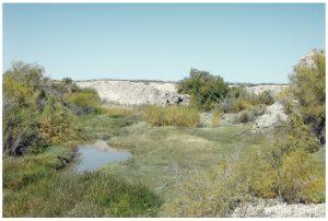 Amargosa River, Tecopa