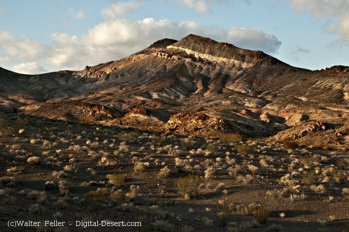 Bullfrog Hills