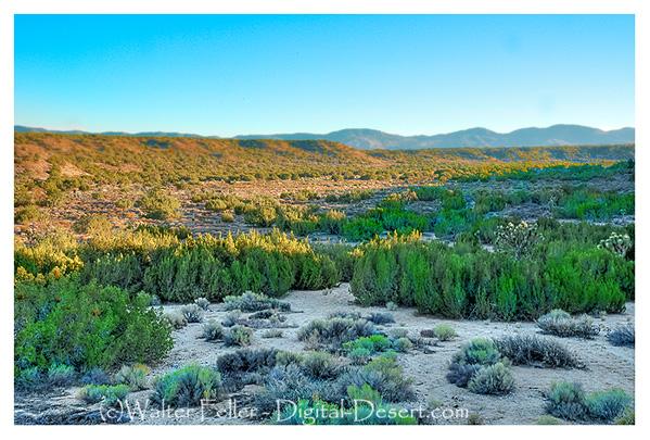 Antelope Valley Wash/Ranchero - Hesperia