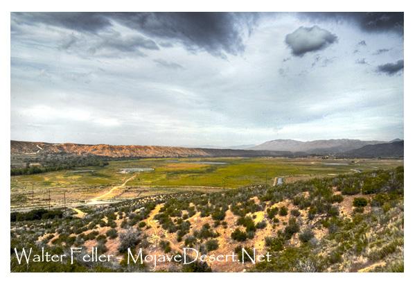 Las Flores Ranch