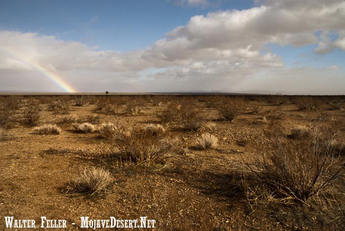 Rainbow off 395 - Adelanto