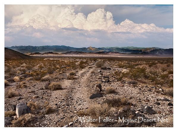 Old Spanish Trail/Salt Lake Road east of Tecopa, CA.