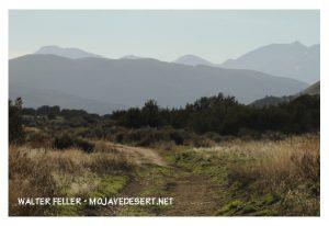 Summit Valley, Las Flores Ranch