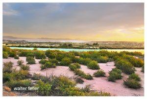 Sunrise Colorado River