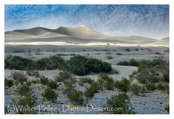 Mesquite Flats Sand Dunes, Death Valley
