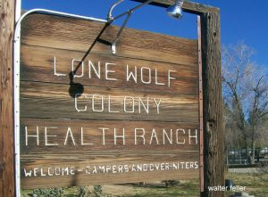 Lone Wolf Colony, Apple Valley, CA.
