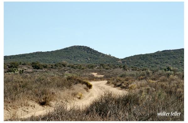 Trail to the hogback - 1851 alternative to Cajon trail.