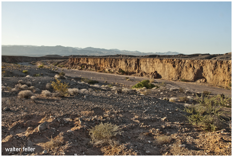 Callville Wash, Lake Mead