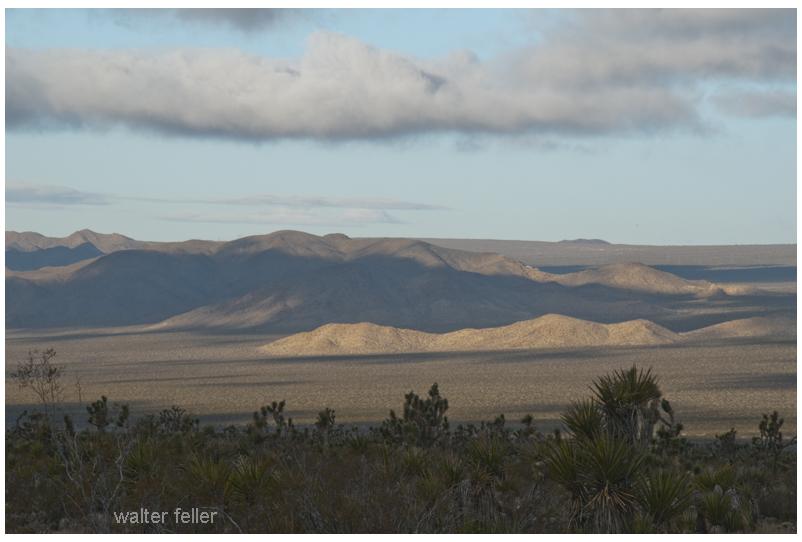 Looking across Kelso Wash toward Marl Mountains