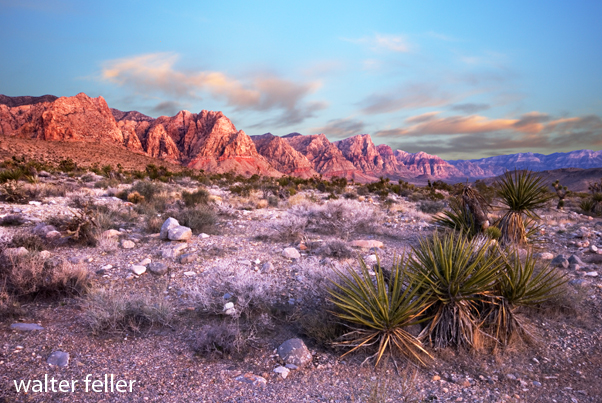 Spring Mountains - Red Rock Canyon- Nevada