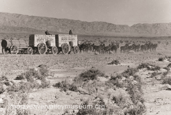 20 Mule Team Borax wagons