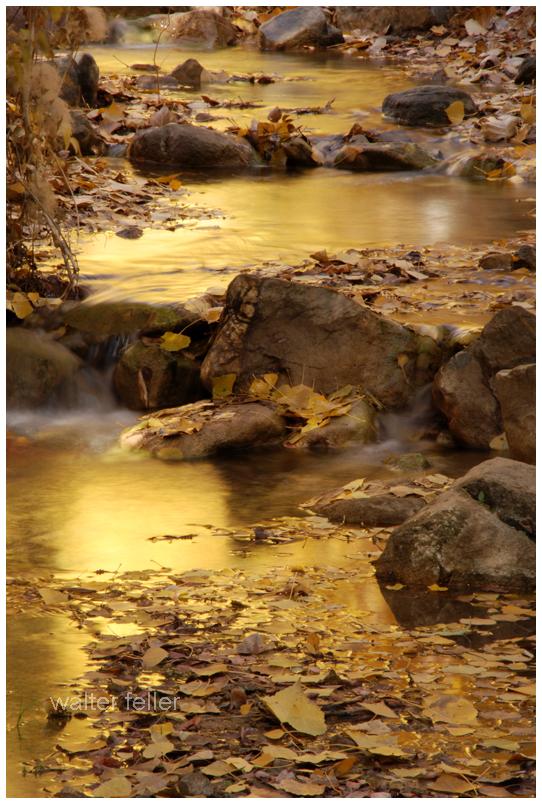 A small, golden creek runs through the valley