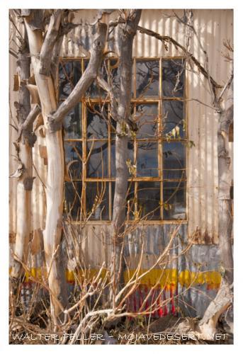 411-window-rDSC_2610